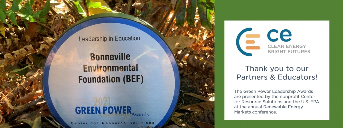 Image of 2021 Green Power Leadership Award for Education